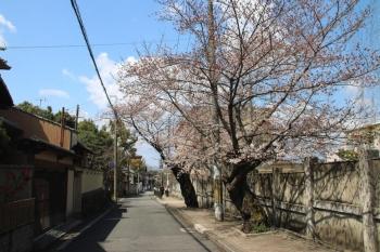 Kyotosumitomo190414