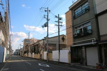 Kyotoyasuda190515
