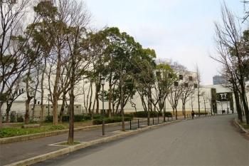 Osakacastle190519