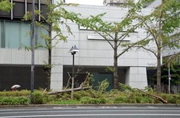 Osakamidosuji190617