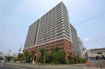 Osakasagisu190619