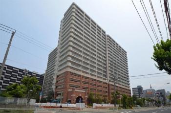 Osakasagisu190622