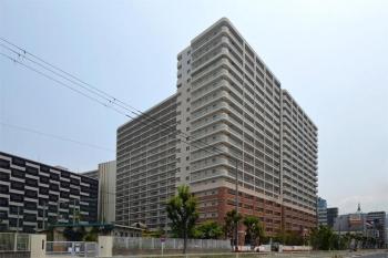 Osakasagisu190625