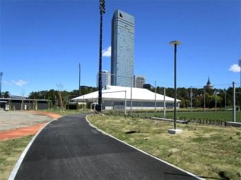 Chibajfa200615