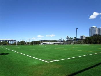 Chibajfa200621