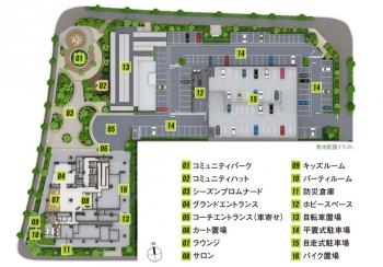 Chibakashiwanoha200513