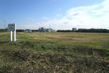 Chibamakuhari200414