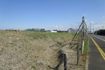 Chibamakuhari200415