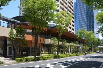 Kawasakikosugi200915