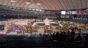Tokyodome200717