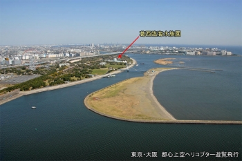 Tokyokasai201011