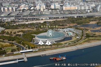 Tokyokasai201012
