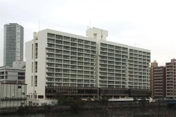 Tokyokatidoki191220