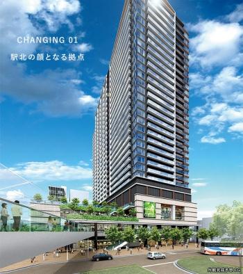 Tokyokoiwa201112