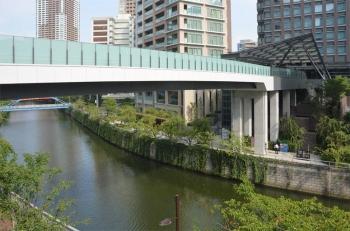Tokyoosaki190953