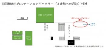 Tokyorygoku201113