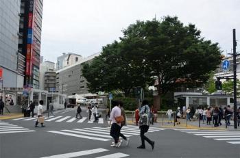 Tokyoshinjuku200774
