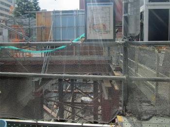Tokyoyanmar200613
