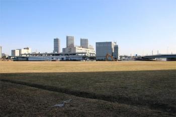 Yokohamamm21191117