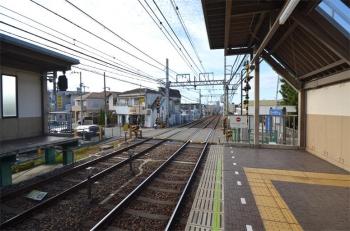 Ashiyaashiya191217