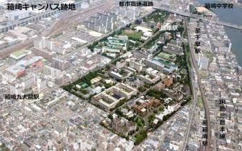 Fukuokahakozaki201011