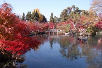 Kyotoihg210814