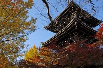 Kyotoihg210816