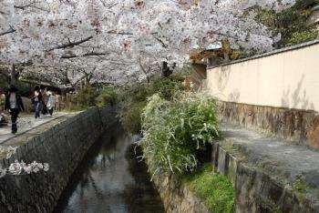 Kyotoihg210817