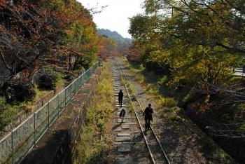 Kyotokujo201113
