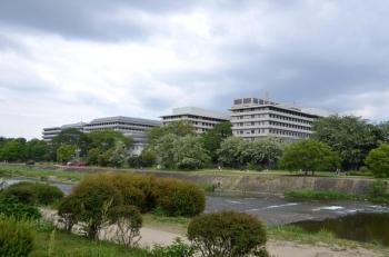 Kyotomedicine210411