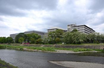 Kyotomedicine210413