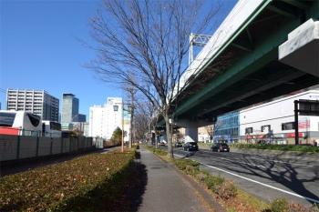 Nagoyahaseko200316