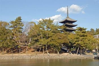 Narakohfukuji200211