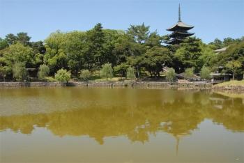 Narakohfukuji200213