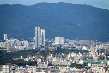 Osakanakatsu191112