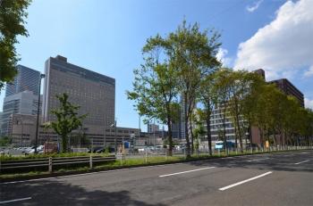 Osakananiwa200326