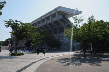 Osakasakura201215